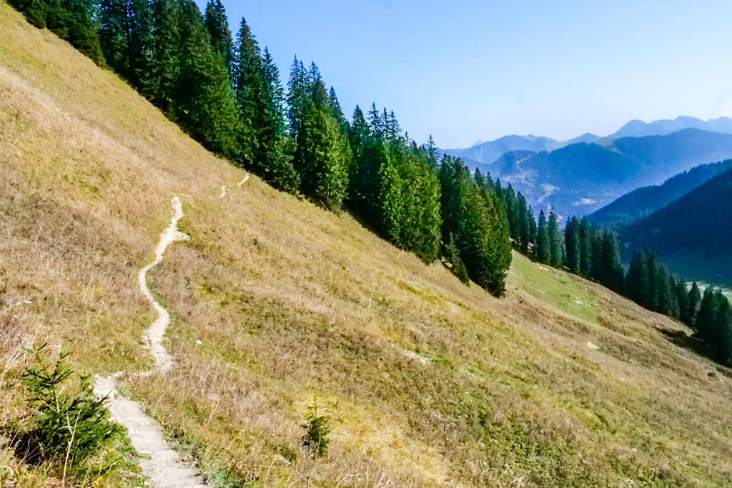 Risserkogel Wanderung - Hangquerung unterhalb dem Setzberg - Tegernsee, Bayern