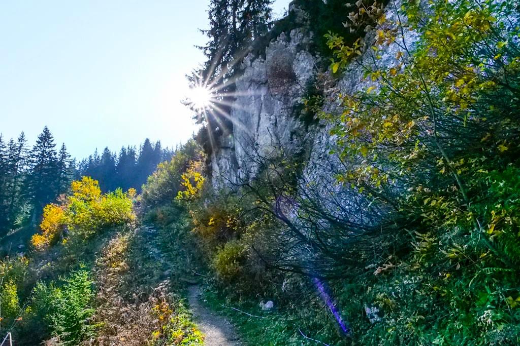 Entlang der Setzberg Ostflanke - Risserkogel Wanderung - Tegernsee, Bayern