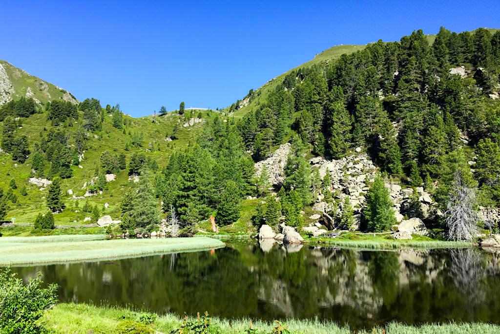 Nockalmstraße - Windebensee mit seinem Alpinen Lebensformen Lehrpfad - Kärnten, Österreich