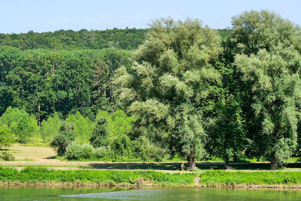 Wipfelsfurt - Donau Altmühltal Schifffahrt zur Weltenburger Enge - Bayern
