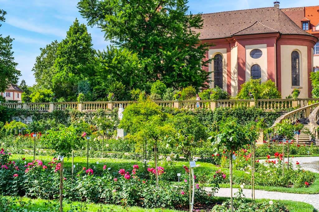 Der wunderschöne Italienischer Rosengarten ist eine der Hauptattraktionen der Insel Mainau - Baden-Württemberg