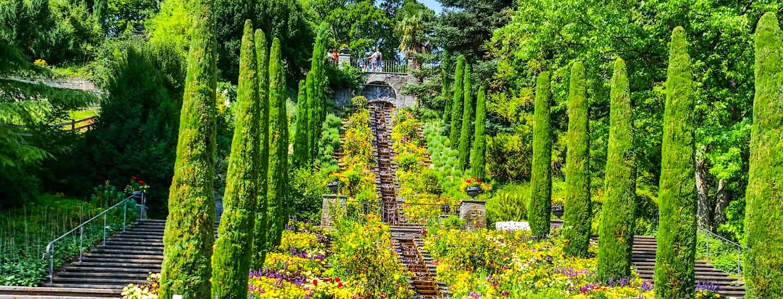 Insel Mainau – Blumenidylle, Schmetterlinge, Schloss & Baum-Giganten