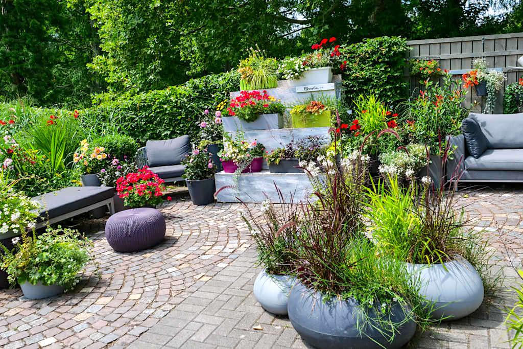 Blumeninsel Mainau - Platanenweg 5: Schaugärten & Gartentrends - Baden-Württemberg