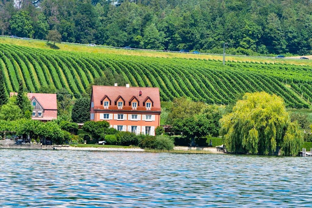 Ausblicke auf Panorama-Schiffstour auf dem Überlinger See - Baden-Württemberg