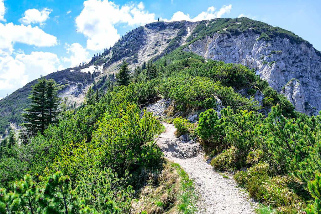 Herzogstand Heimgarten Querung - Ausblick auf den Heimgarten Gipfel und Gipfelkreuz - Bayern
