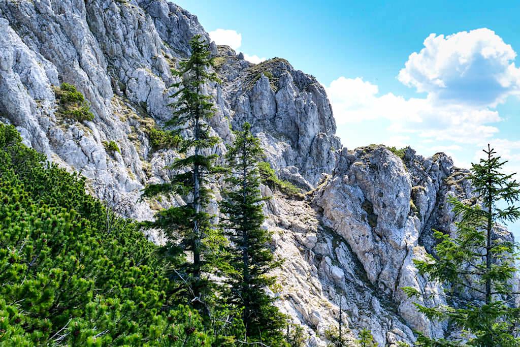 Herzogstand Heimgarten Überquerung & Rundwanderung - Faszinierende Felswände - Bayern