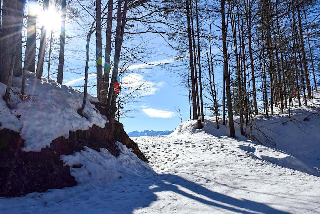 Herzogstand-Wanderung im Winter - Schlitten nicht vergessen - Bayern