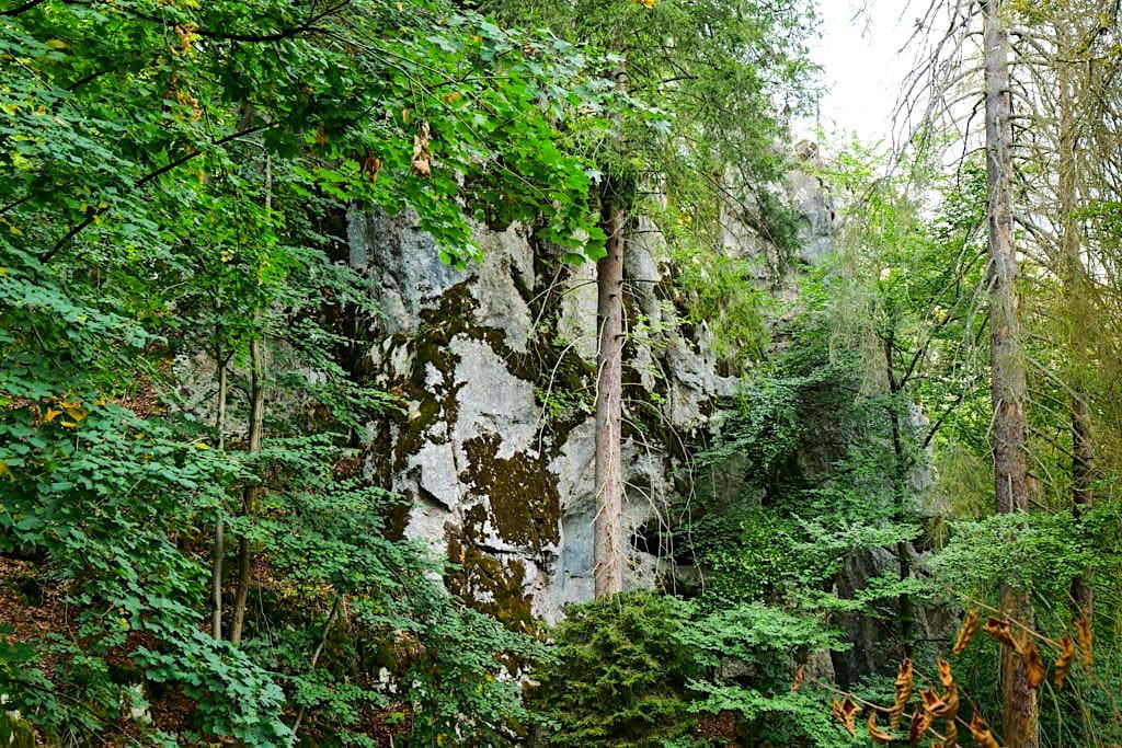 Altmühltal Klamm Wanderung - Ausblicke auf imposante Felswände - Bayern