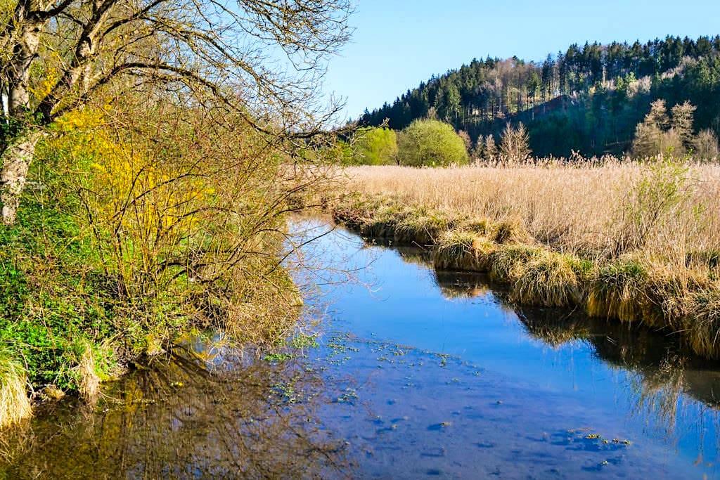 Mittleres Schambachtal - Unberührte, ursprüngliche Natur entlang dem Schambach - Altmühltal Geheimtipps - Bayern