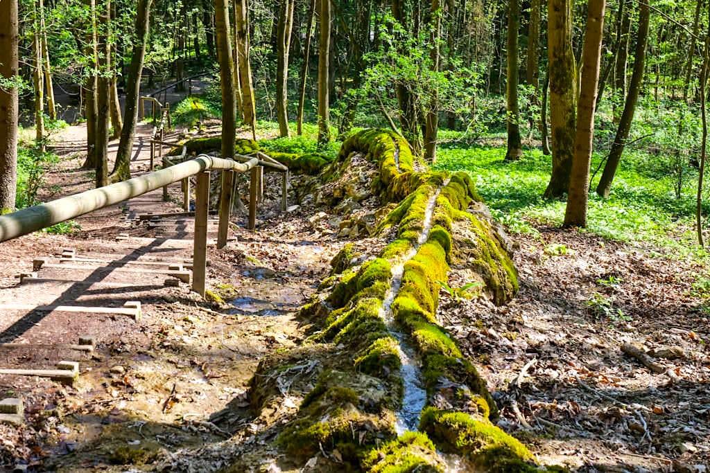 Steinerne Rinne - Wenn Wasser einen Kalktuff-Damm baut - Altmühltal Sehenswürdigkeiten - Wolfsbronn, Bayern