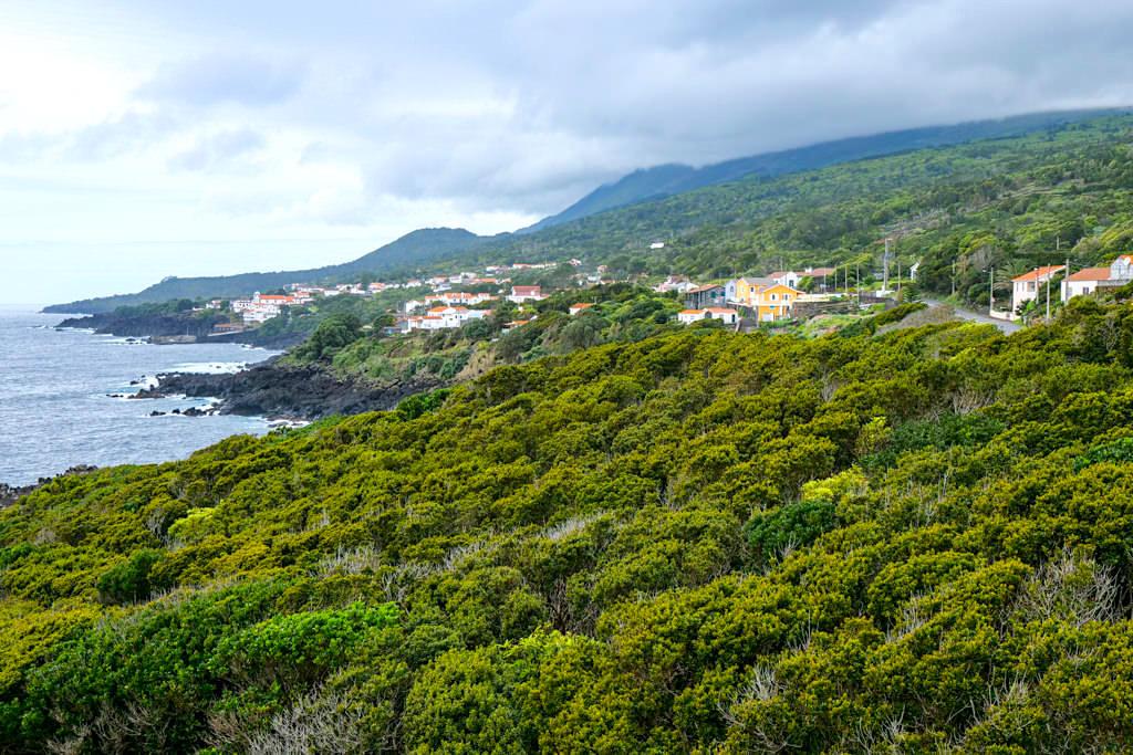 Ausblick auf das schöne Dörfchen Sao Joao an der Südküste der Insel Pico - Azoren