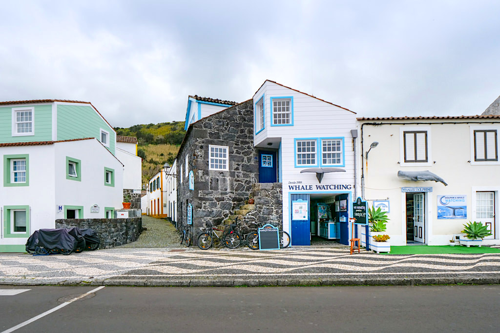 Lajes Walbeobachtungstouren - Anbieter am Hafen - Insel Pico Sehenswürdigkeiten - Azoren