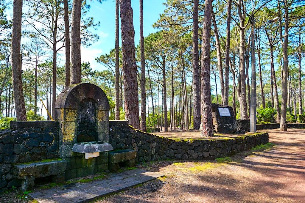 Parque Florestal de Sao Joao - Erholungspark bei Sao Joao im Süden der Insel Pico - Azoren