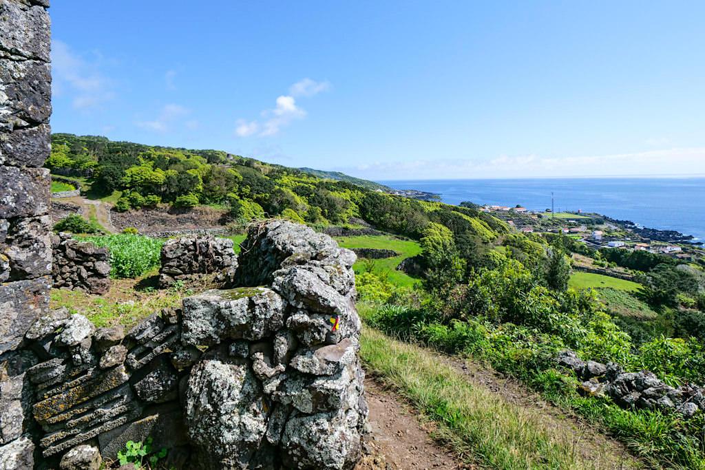 PR11PIC - Schöne Wanderung mit Ausblick auf Calheta de Nesquim - Insel Pico, Azoren