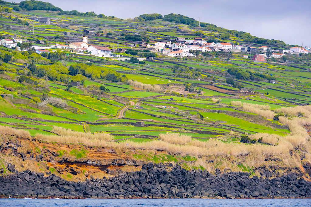 Santa Barbara - Küste & grüne Wiesen - die Landschaften der Insel Pico - Azoren