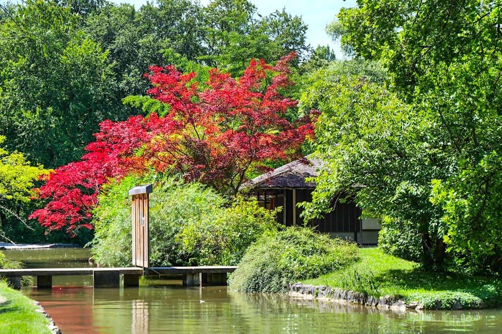 Japanisches Teehaus - Sehenwürdigkeit im Südteil des Englischen Gartens - München, Bayern