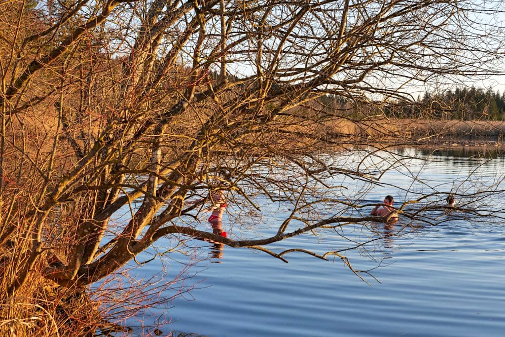 Baden im Maisinger See ist nur möglich bei der Gaststätte im Osten - Starnberg - Bayern