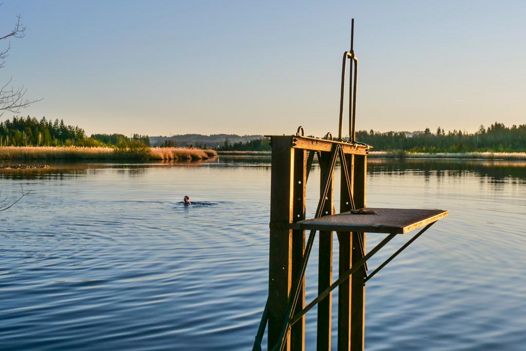 Der Maisinger See ist mit seinem 1m tiefen Gewässer nicht unbedingt ein Badesee - Bayern