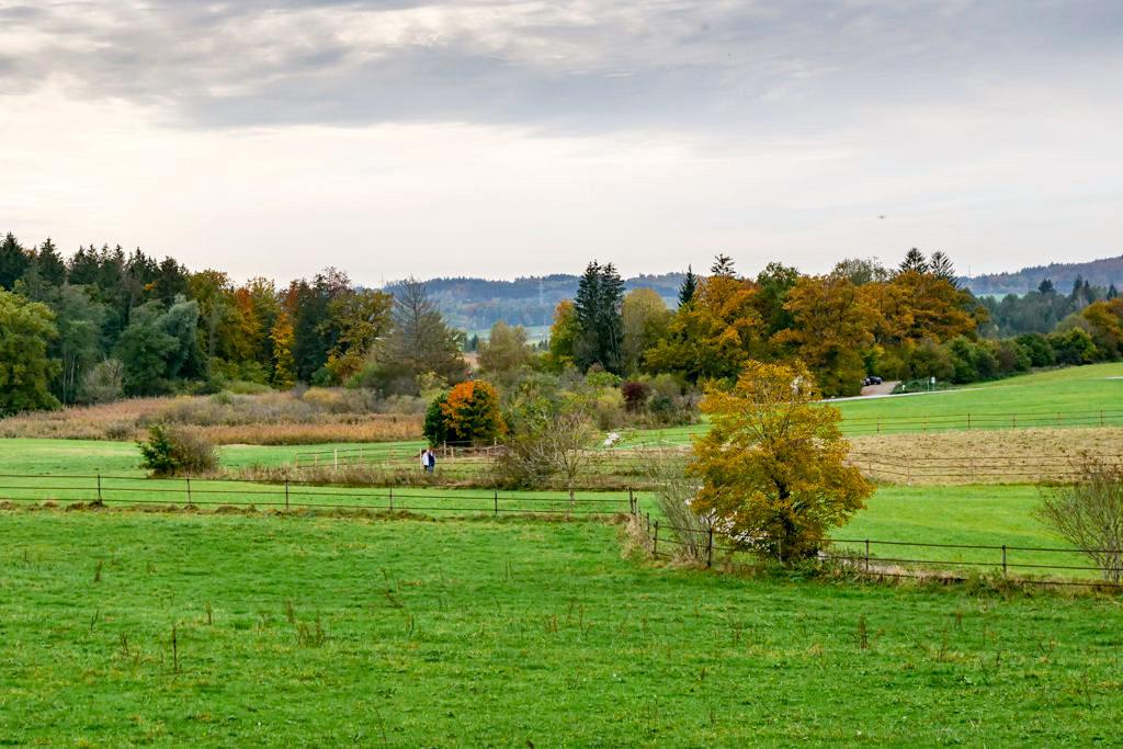 Maisinger See Wanderung - Weite Wiesenlandschaft zwischen Maising & Maisinger See - Bayern