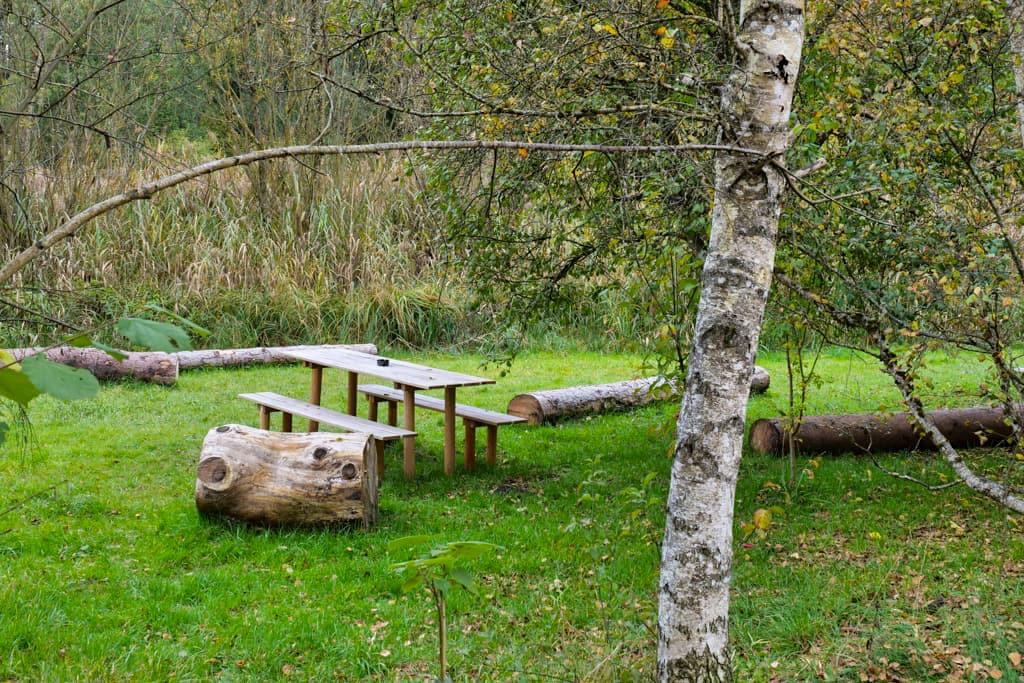 Lauschig schöne Picknickplätze am Maisinger Seehof nahe Starnberg - Bayern