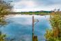 Maisinger See – Starnberger See – Ammersee:  Leichte 3-Seen-Wanderung