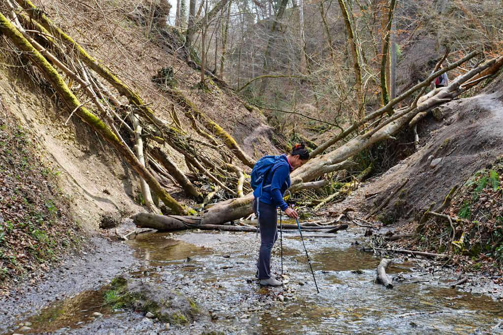 Wandern mit Stöcken - Qualität & hochwertige Verarbeitung sind Voraussetzungen für einen verlässlichen Trekkingstock - Passenger on Earth