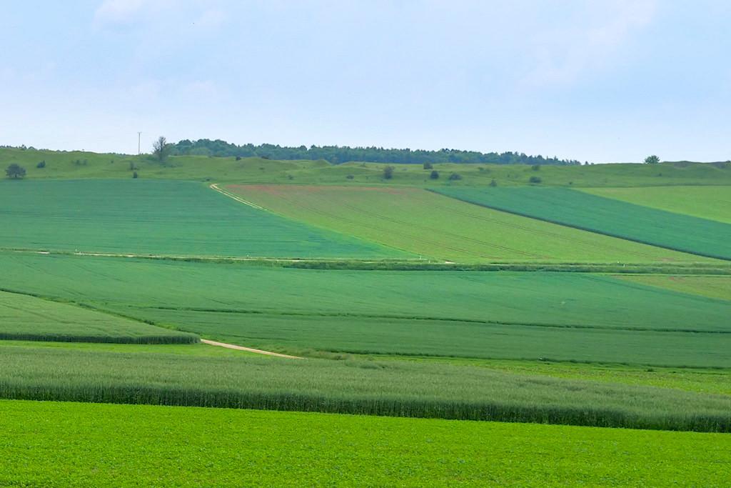 Felder & Wiesen - Schäferweg Wanderung - Donau-Ries, Bayern
