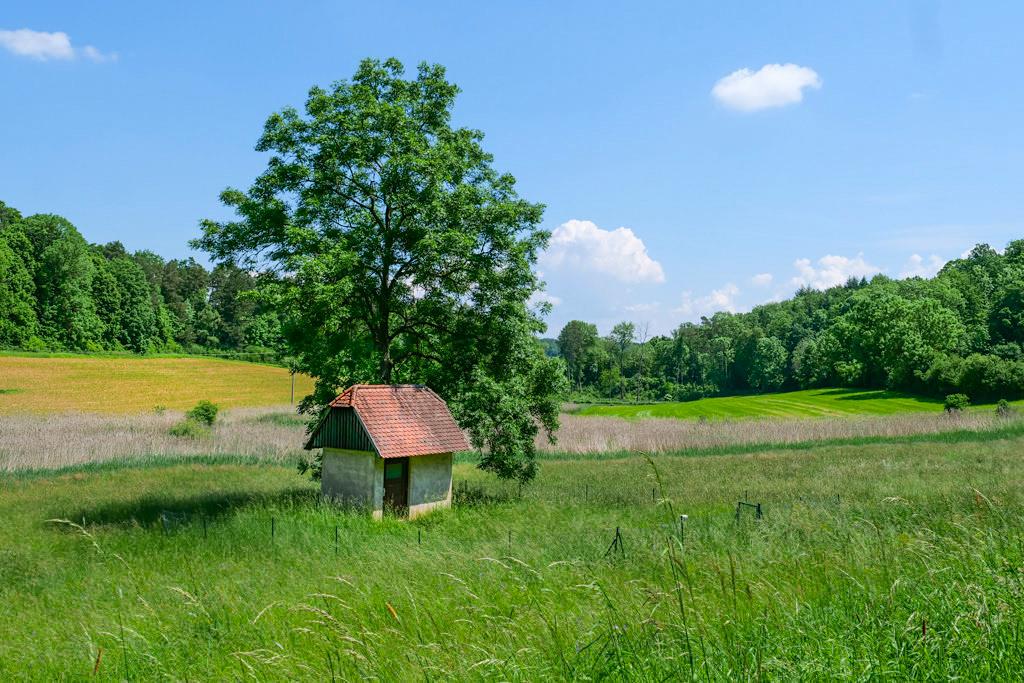 Schäferweg - Rieslandschaft & schönste Ausblicke auf der Rundwanderung im Donau-Ries bei Nördlingen - Bayern