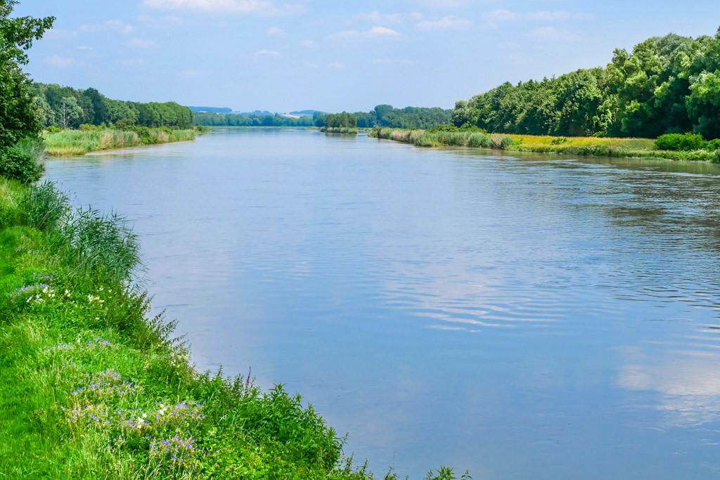 Ausblick auf die Donau bei Tapfheim - Dillinger Land - Bayern