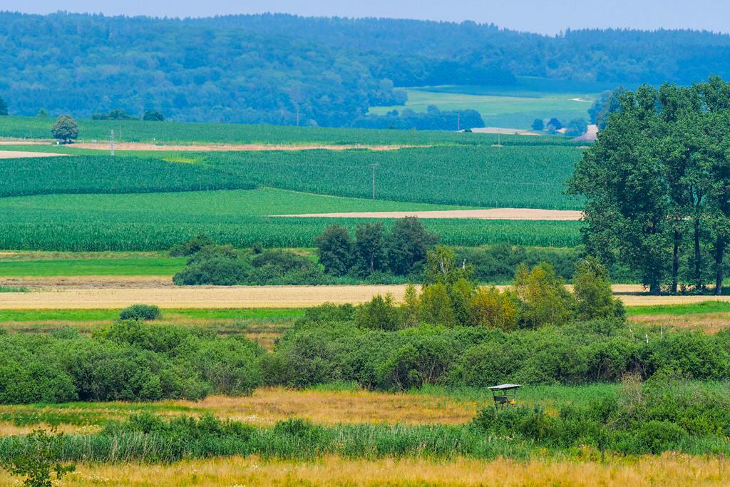 Dattenhauser Ried ist die größte Moorlandschaft auf der Schwäbischen Alb - Weite Ausblicke - Dillinger Land, Bayern