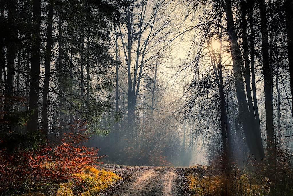 DonauTäler Radweg Wildfang - Herbst - Dillinger Land, Bayern
